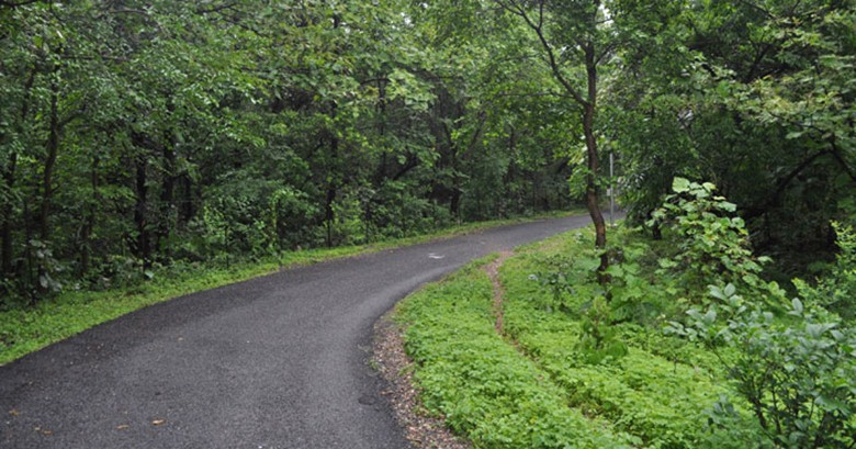 route vadodara to udaipur