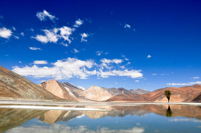 Leh Ladakh Road Trip Travel Guide - Pangong Lake