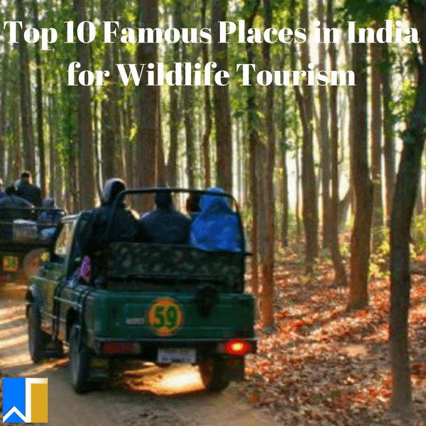 famous place in India for wildlife tourism